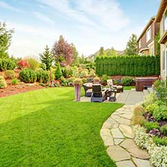 Backyard landscaping renovations