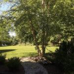 Fieldstone and Stepper Path