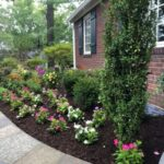Perennial and Annual Flower Planting