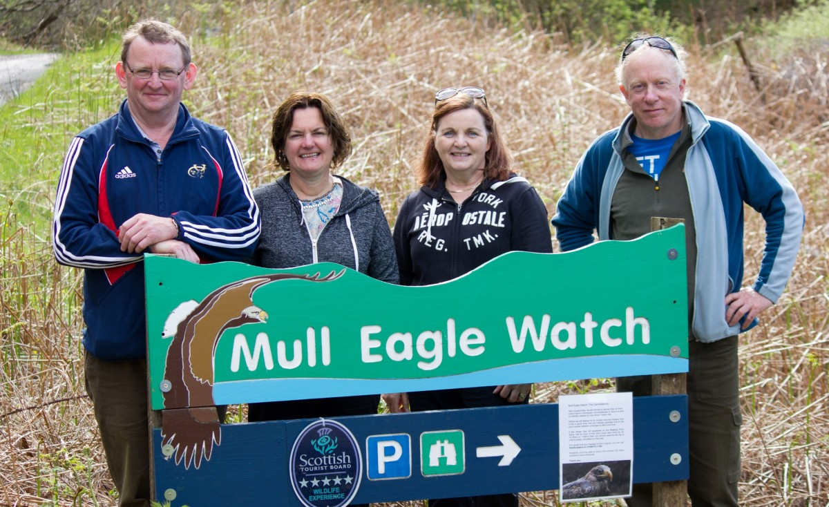 Mull Scotland Mountshannon Eagle