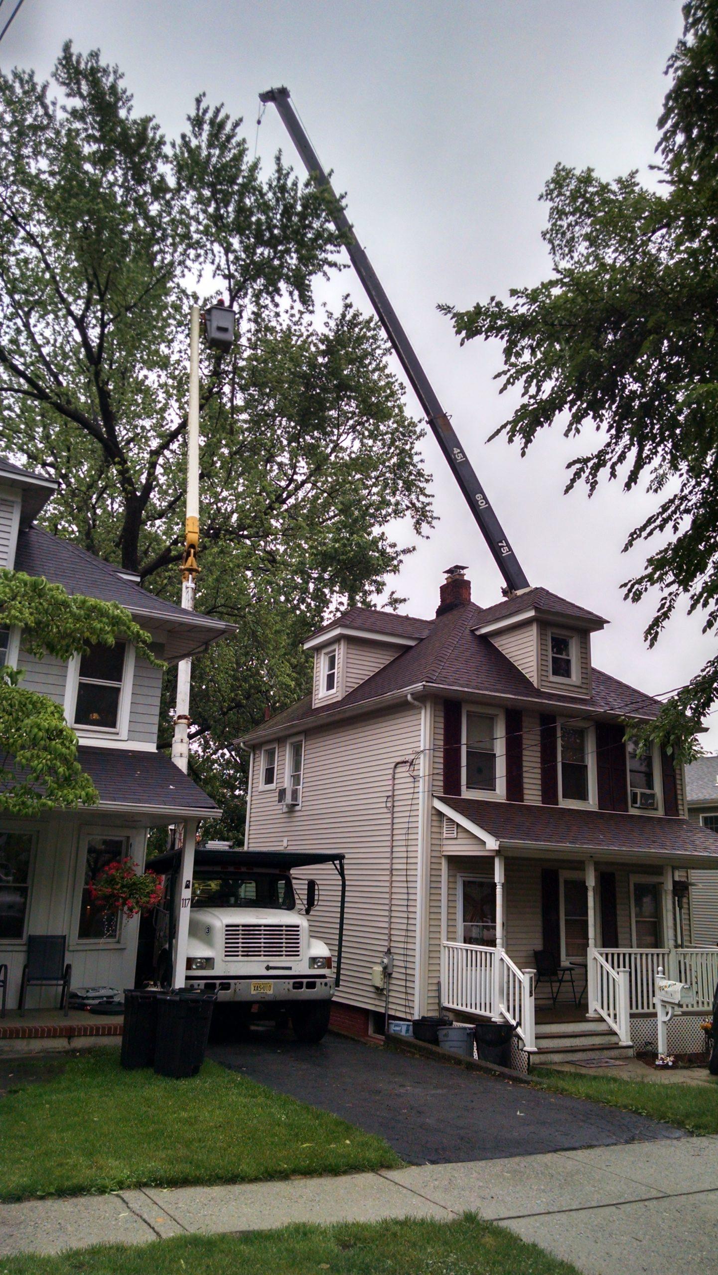 Tree Removal Residential Neighborhood Service