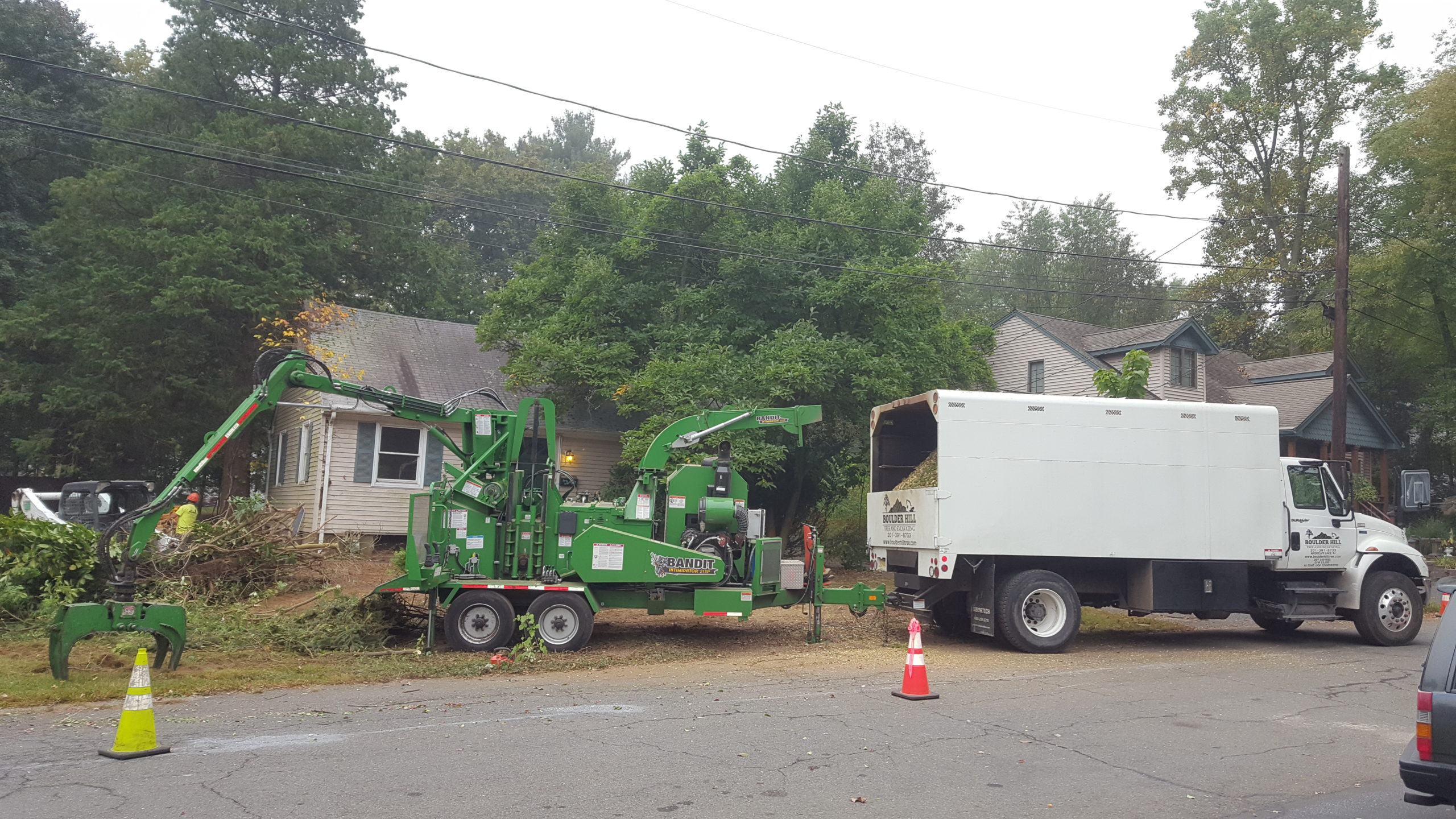 Boulder Hill Residential Tree Removal Services