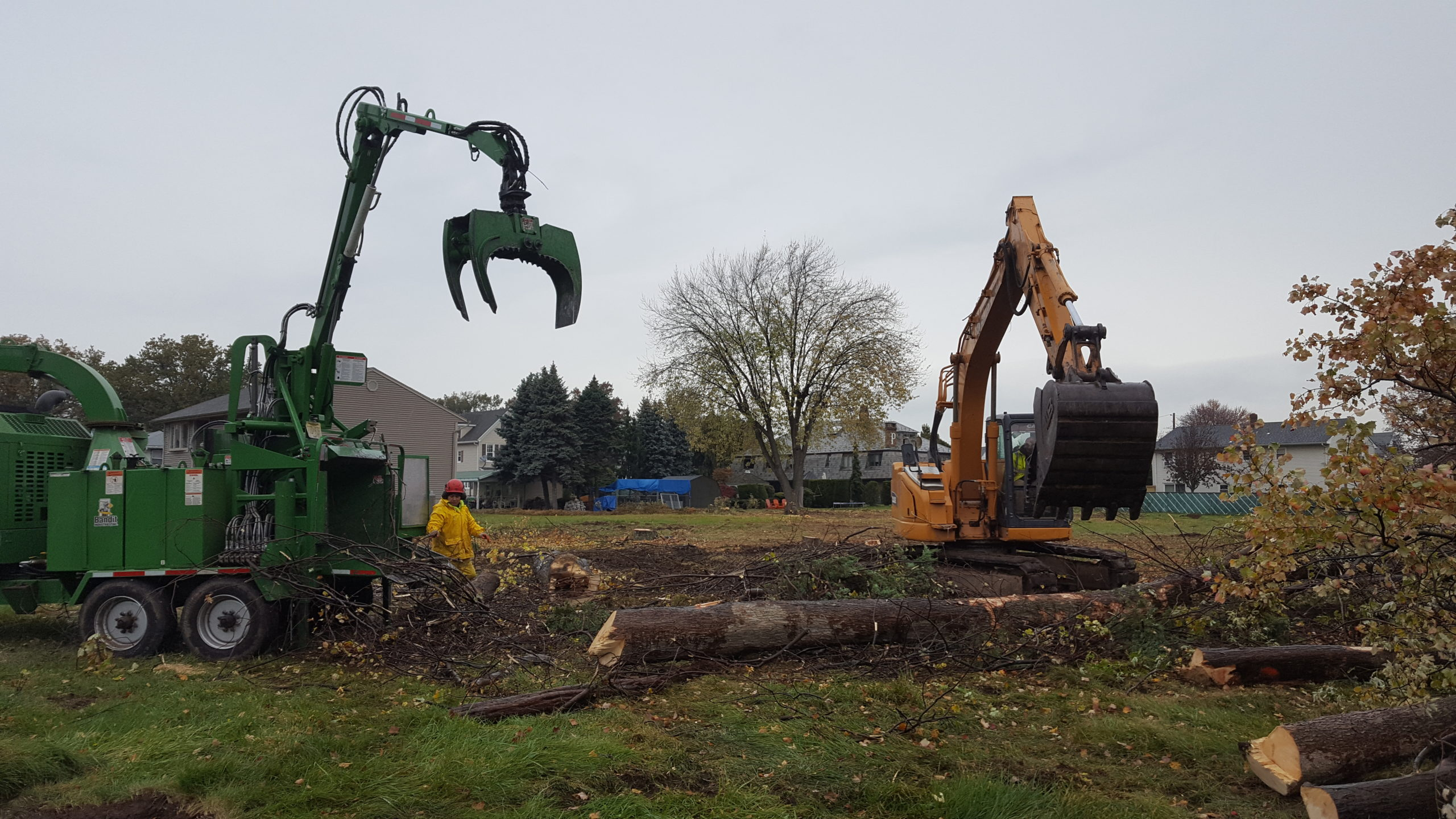 Cranes and Tree Trunks - NJ Land Clearing Services