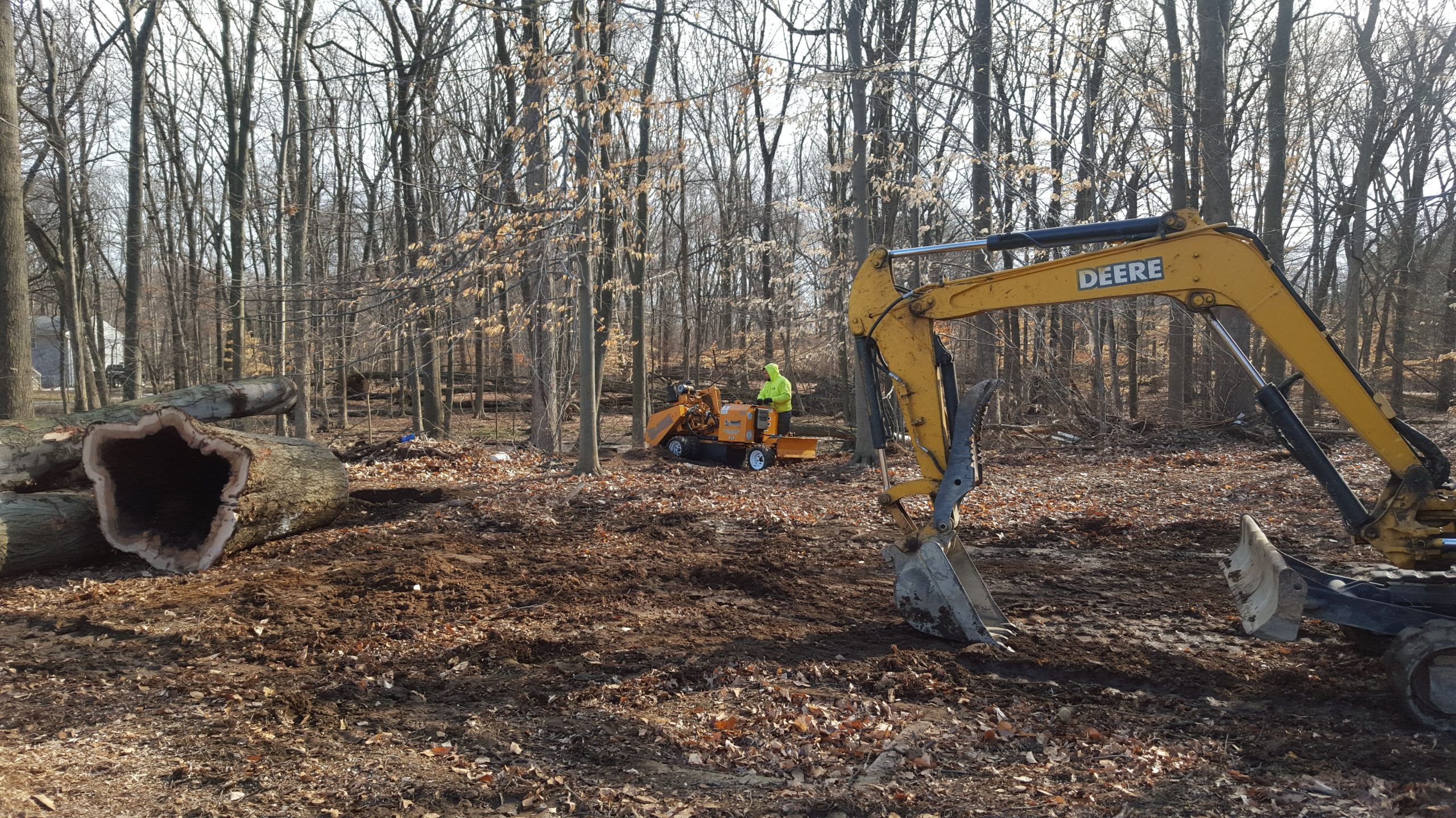 Land Clearing Tree Service NJ