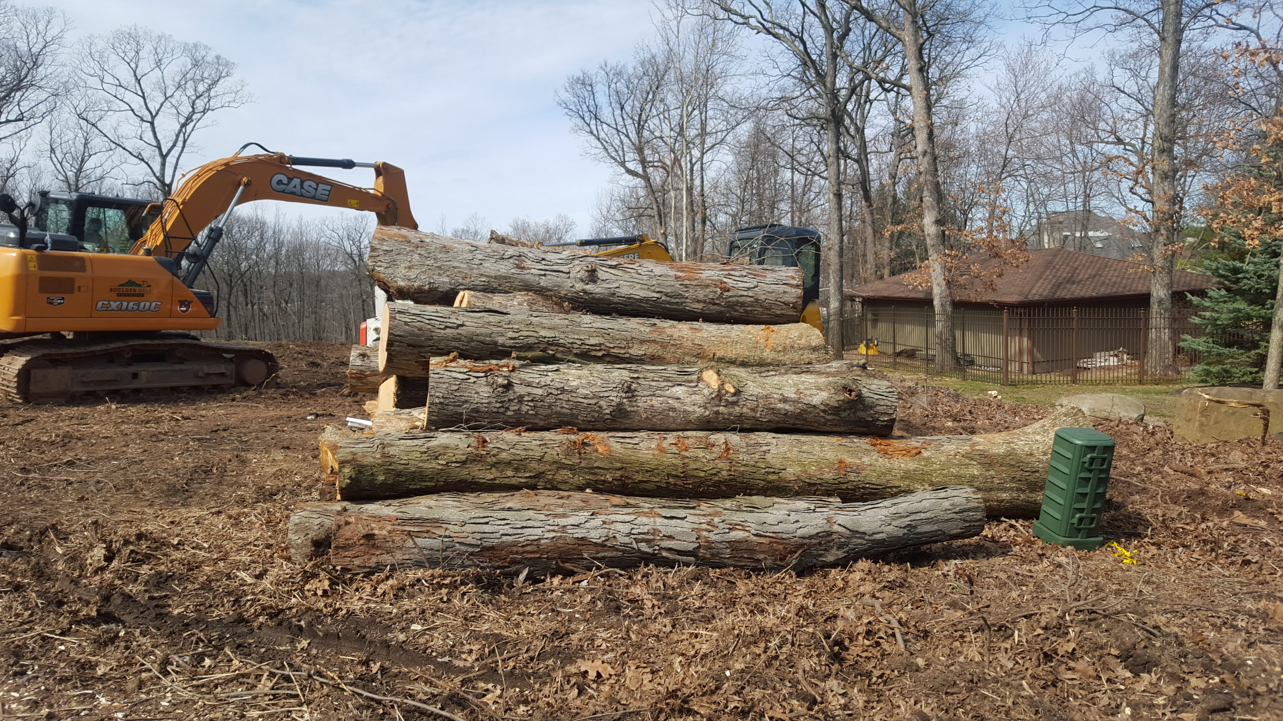 Land Clearing Tree Service Tree Trunks