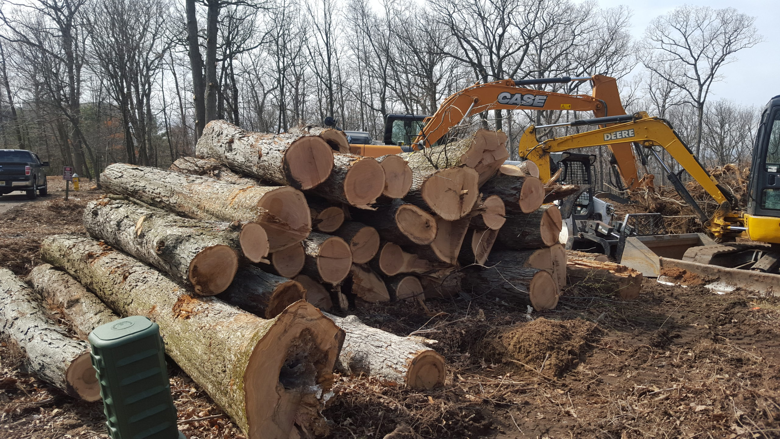 Land Clearing Wood Pile Service NJ