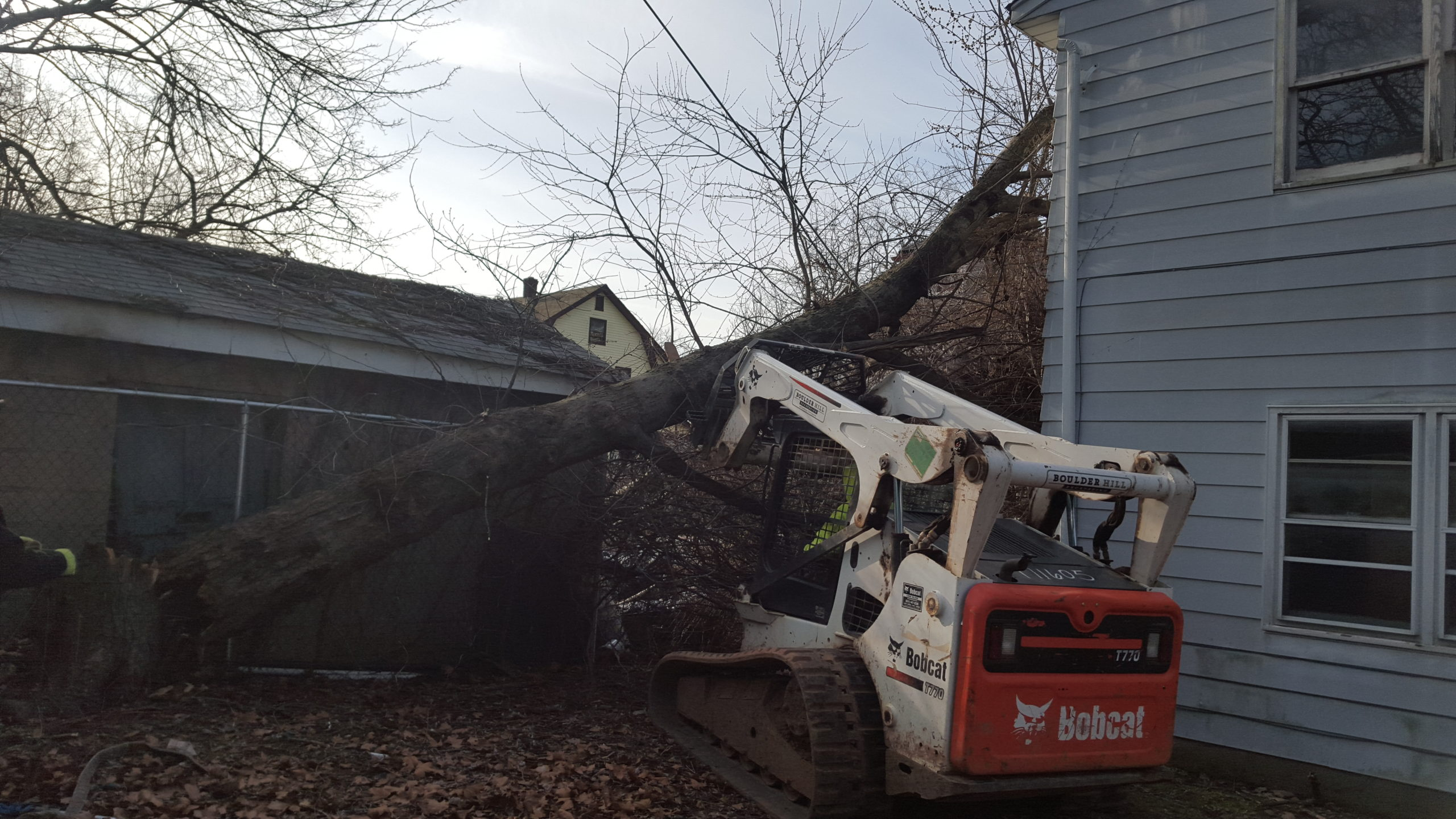 Removing Fallen Tree - Storm Damage Services NJ