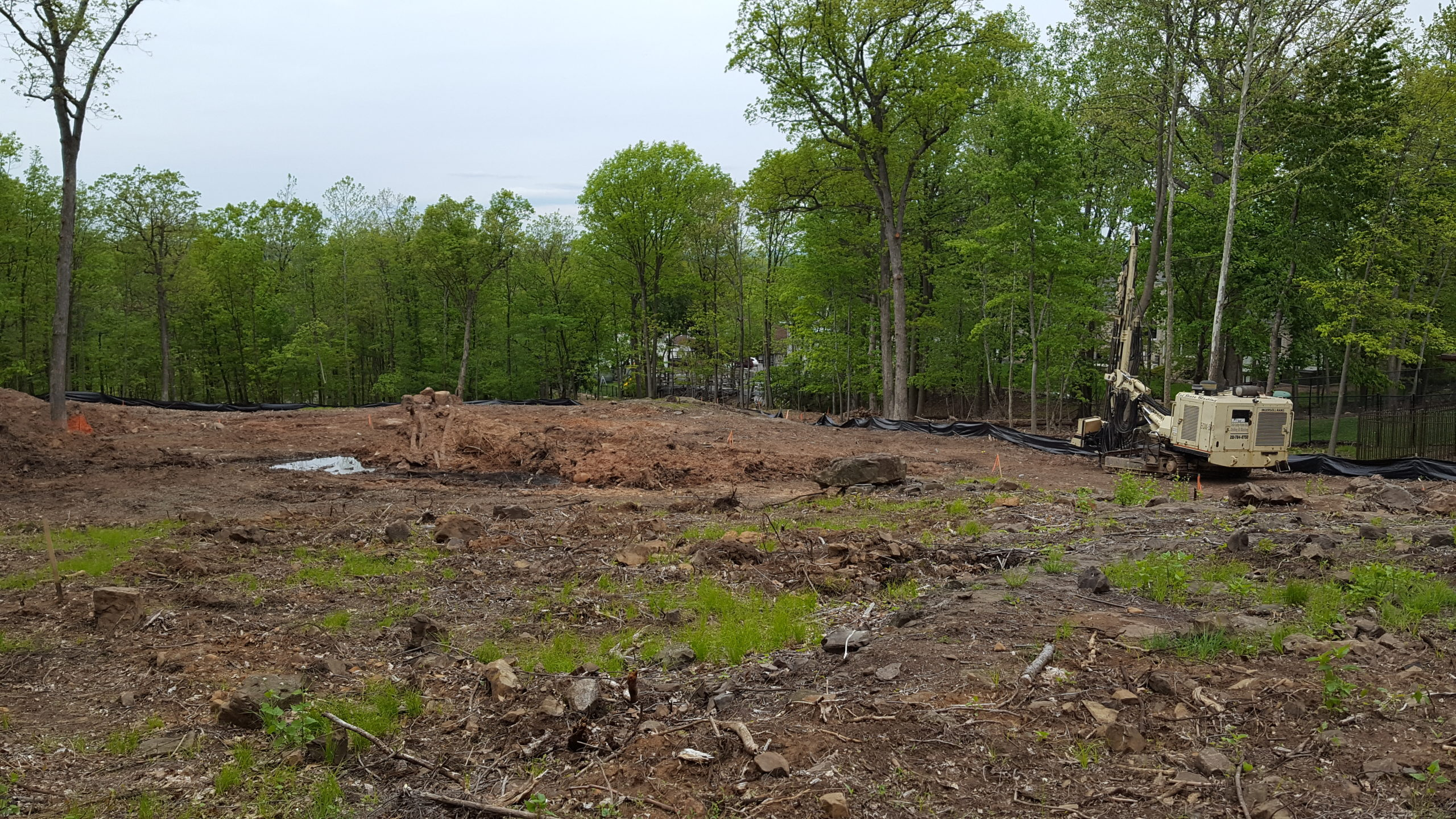 Cleared Land - NJ Tree Removal Services