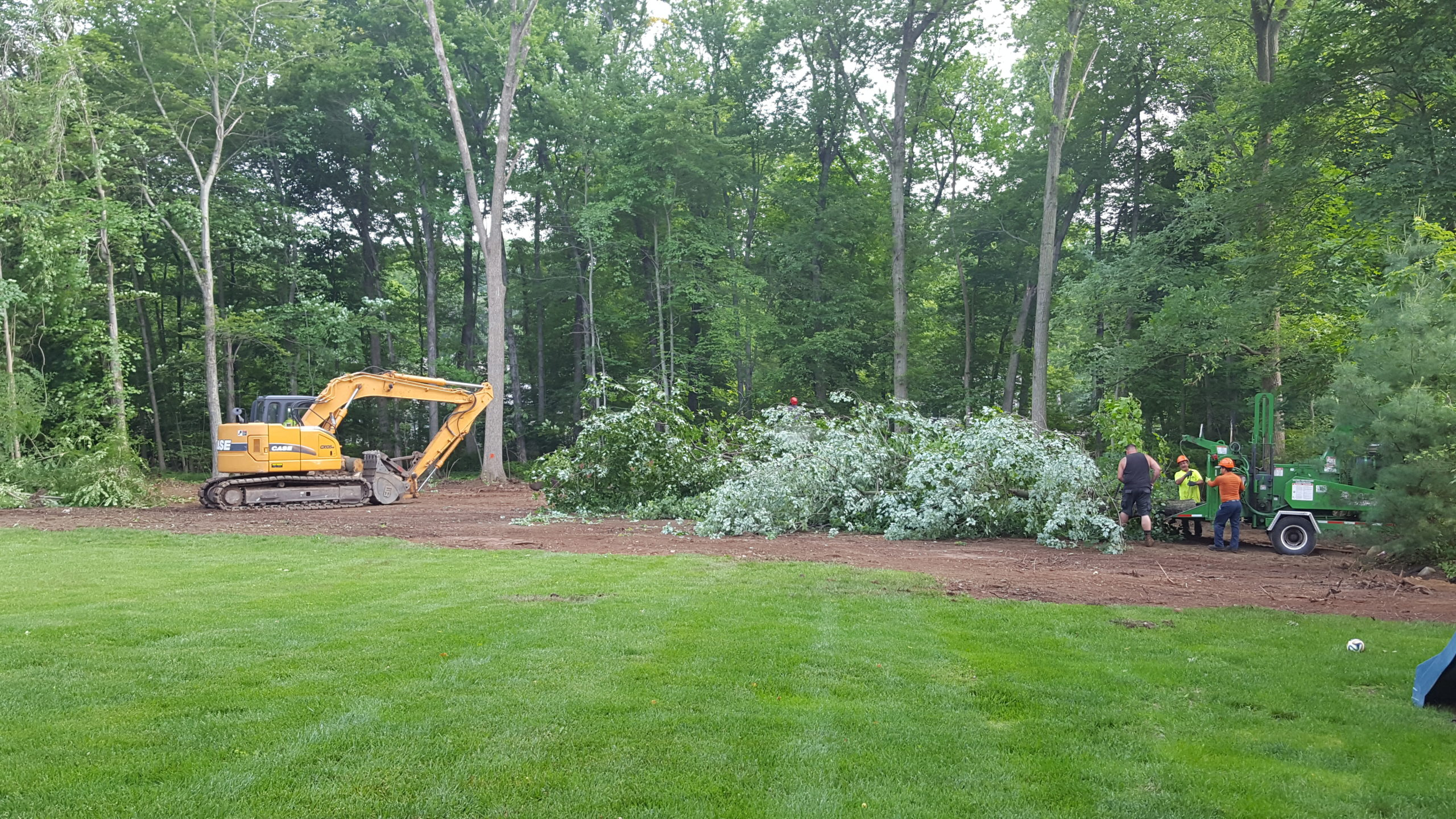 Residential Land Clearing and Tree Removal