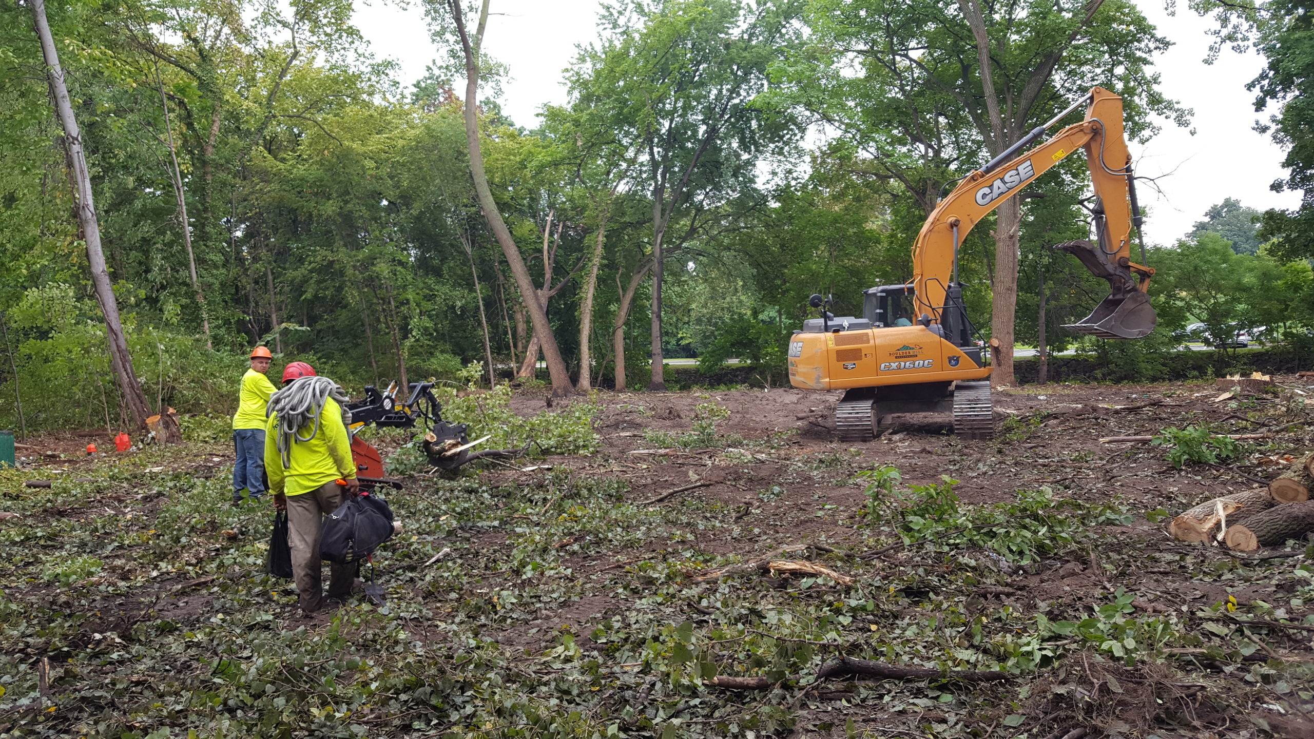 Commercial Land Clearing - NJ Tree Removal Services