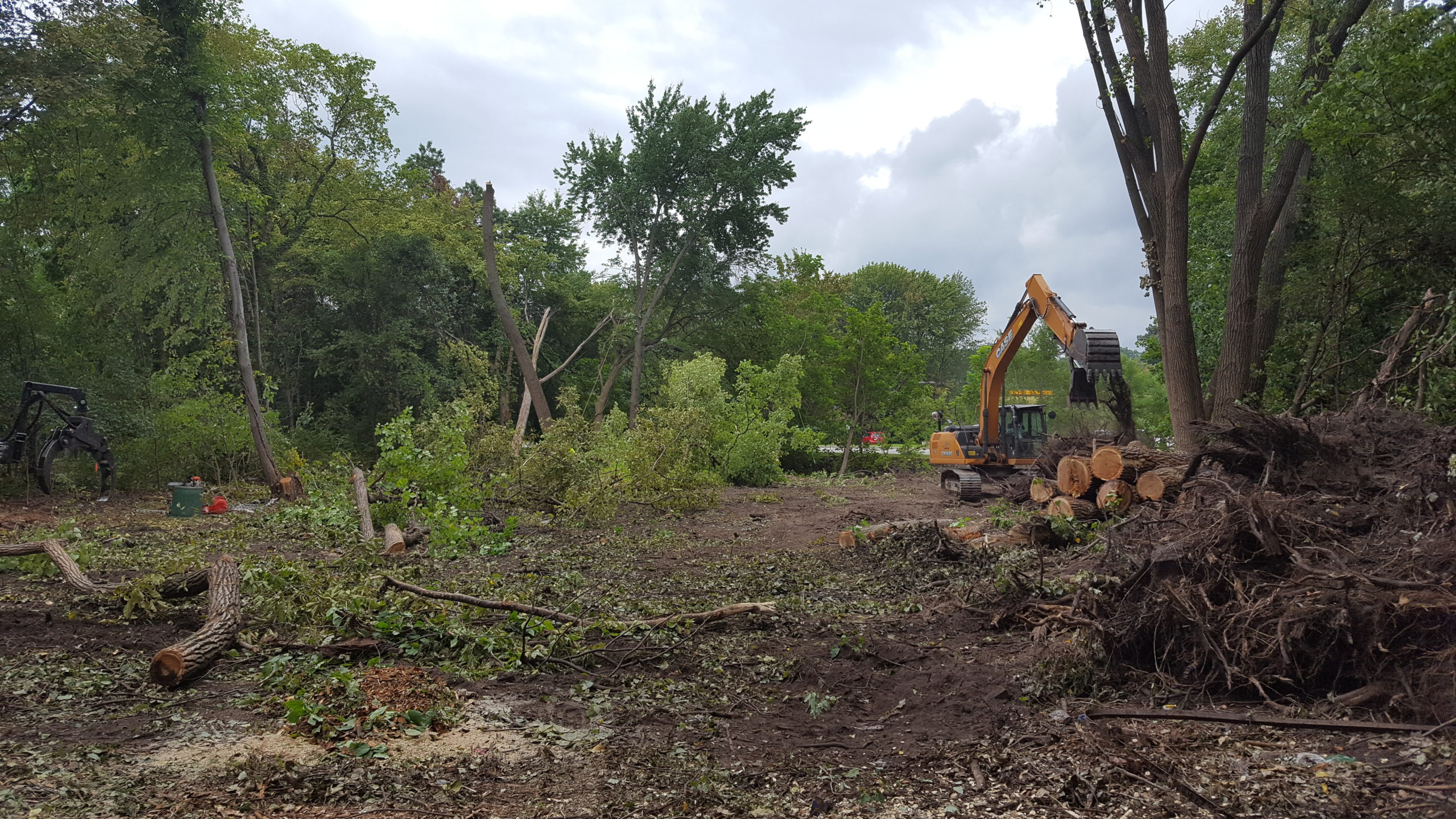 Land Clearing and Tree Removal - NJ Tree Care Services