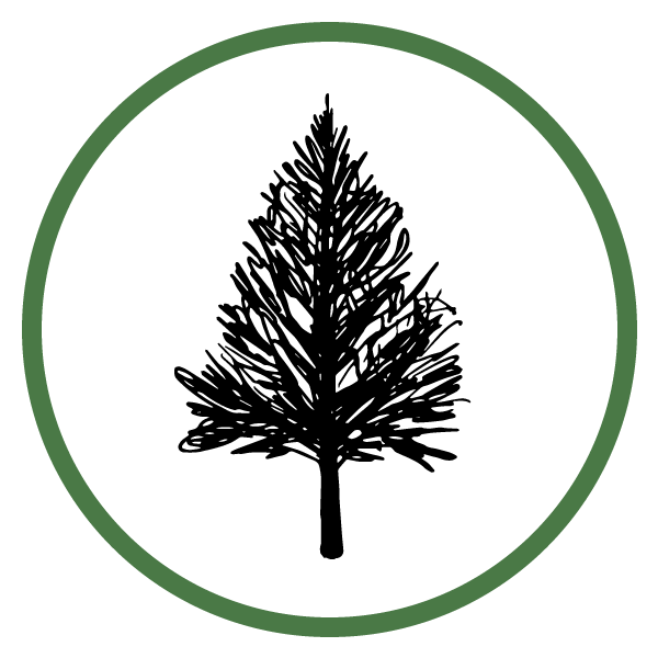 Boulder Hill Tree Services
