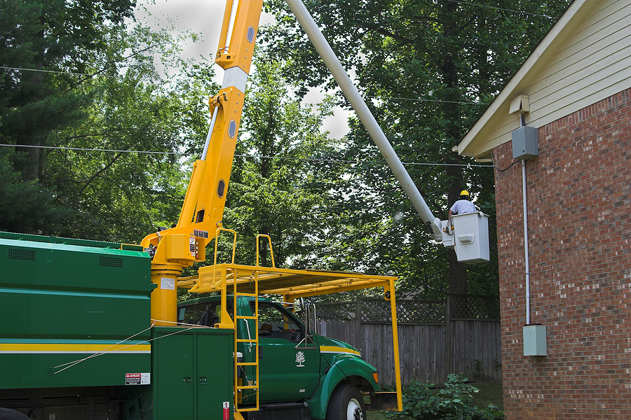 Commercial tree services near me