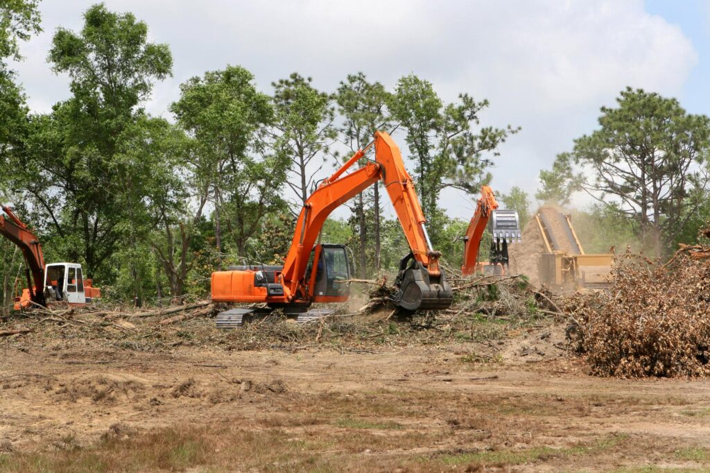 tree clearing services near me
