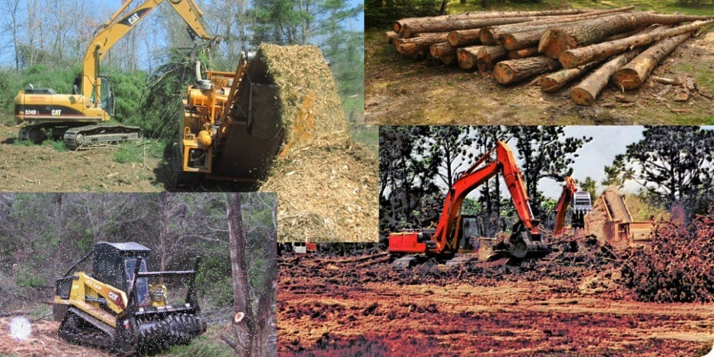 The Benefits of Professional Land and Tree Clearing Service