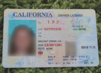 Driver License CA
