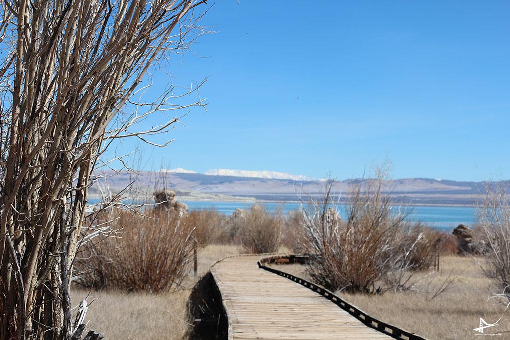 Mono Lake _ trilha na reserva