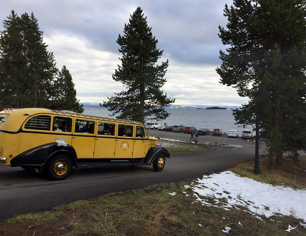 Transporte no Yellowstone
