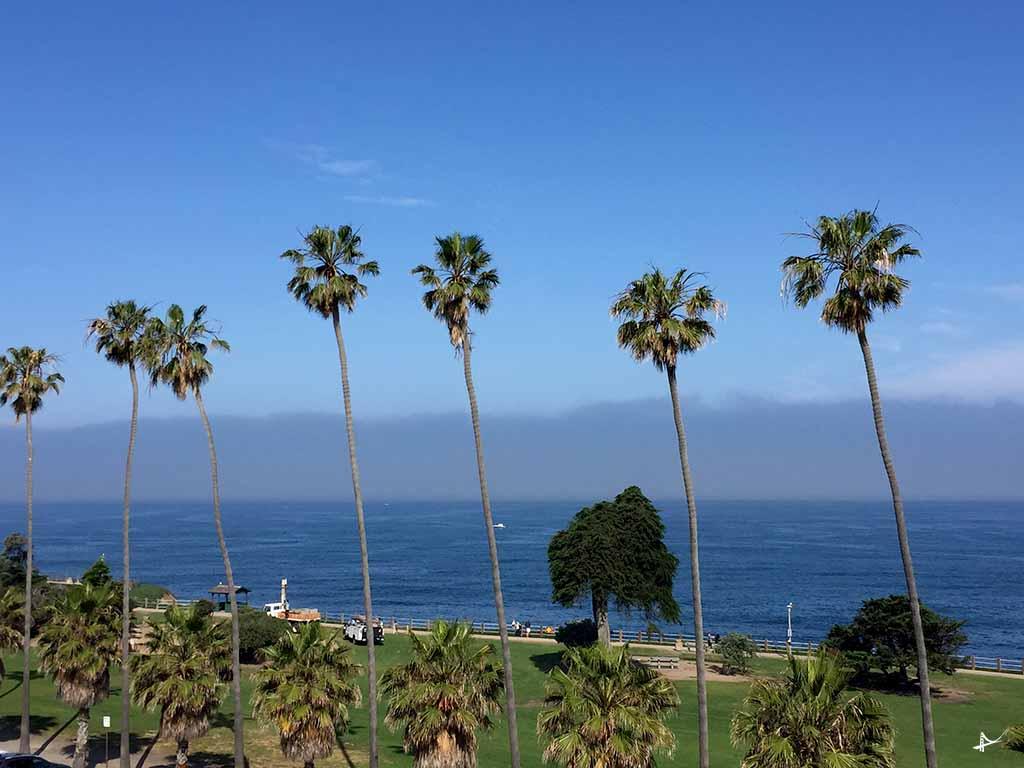 o que fazer em La Jolla