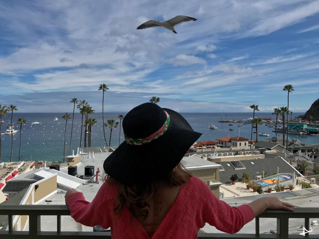 Vista da nossa varanda no The Avalon Hotel em Catalina Island