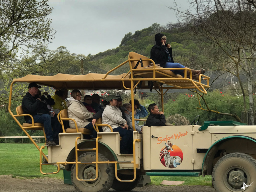Tour no Safari West