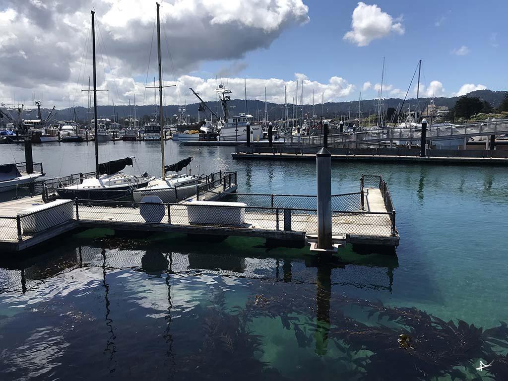 Breakwater Cove Marina em Monterey