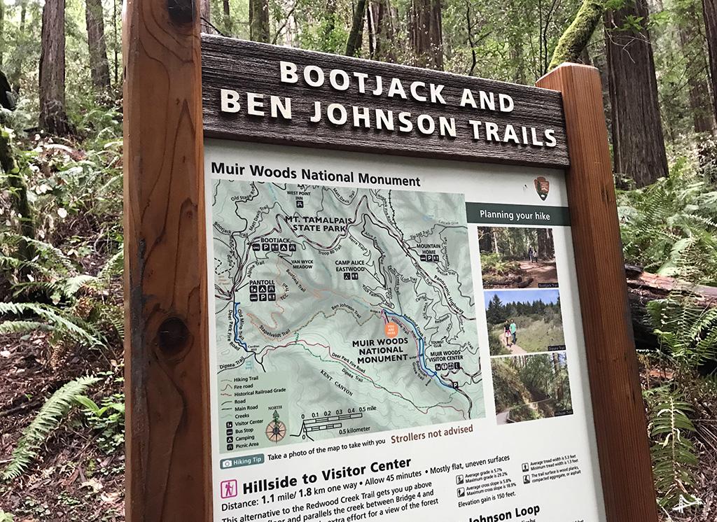 Trilhas no Muir Woods