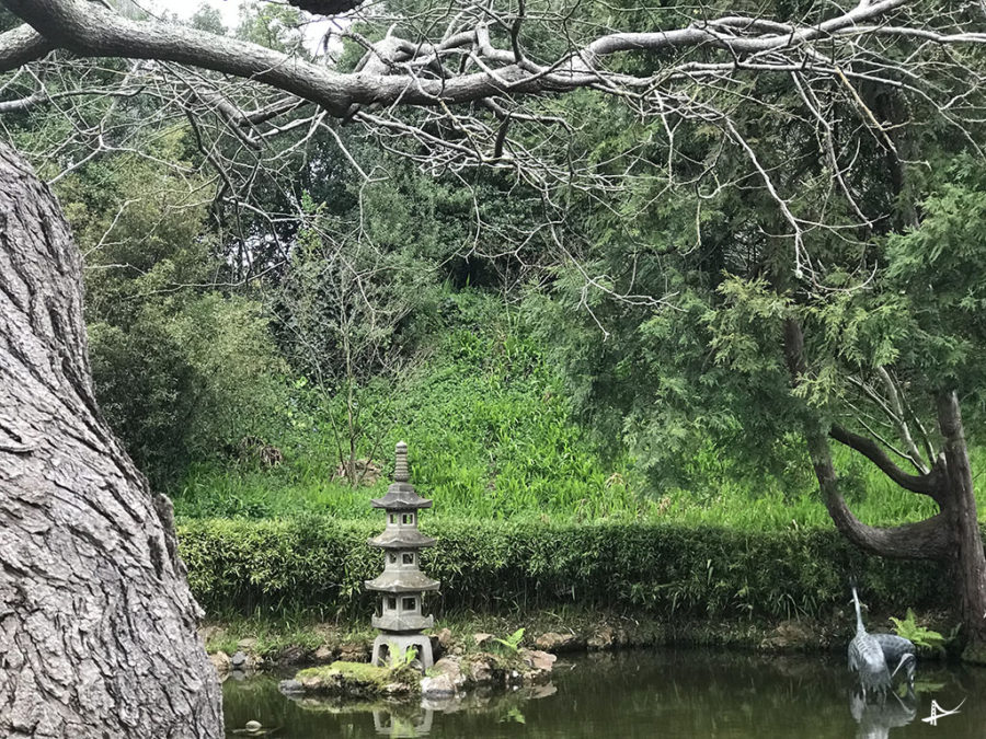 Tea Garden SF