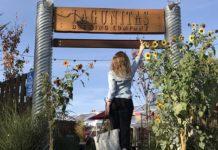 Tour na Lagunitas em Petaluma