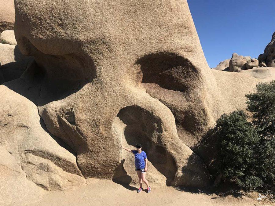Skull Rock no Joshua Tree