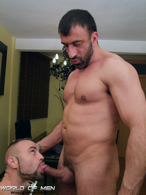 porn_addicted_bear_Collin_O_Neal_and_Cassio_01.jpg