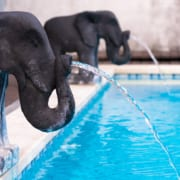 How to Keep Your Pool Cool