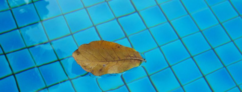 Fall Tips for Your Pool: Leaf Removal