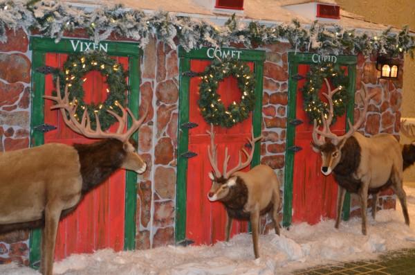 reindeer stables