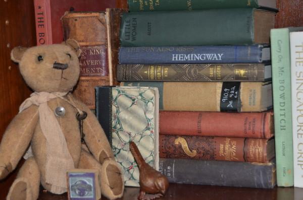 andrea's bookcase