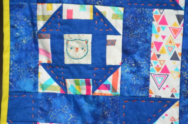 Schroideringer's Cat closeup
