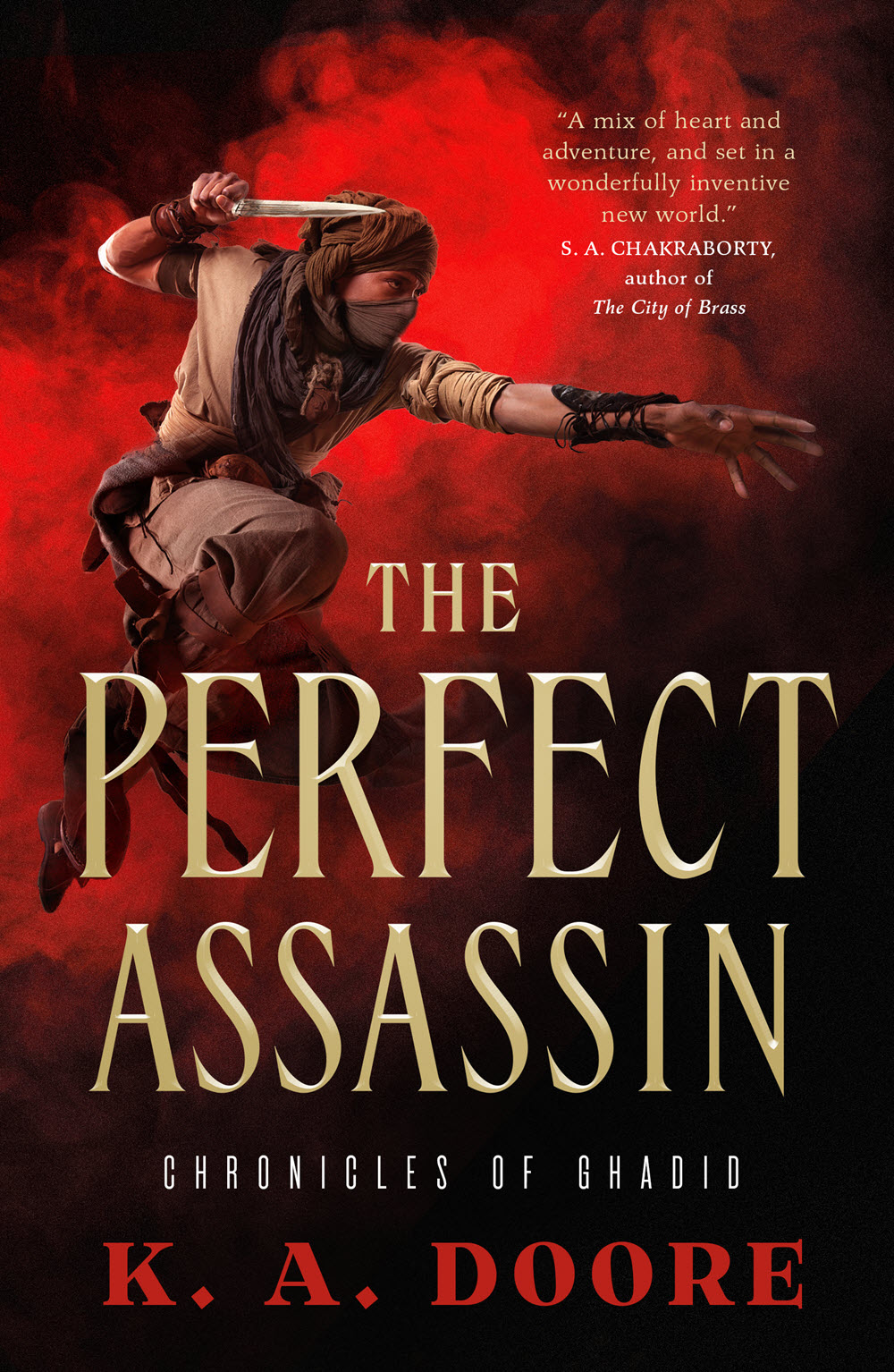 The Perfect Assassin cover image
