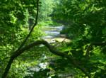 River15