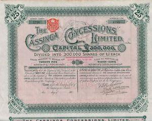 Cassinga Concessions Ltd. - A South African Security, circa 1902