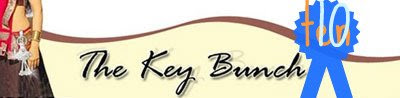 September 2008, launched of thekeybunch