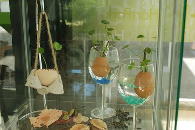 plant on wine glass