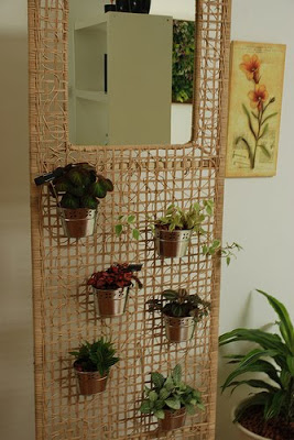 planter hanging on the wall