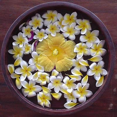 the beautiful flower bowl in bali