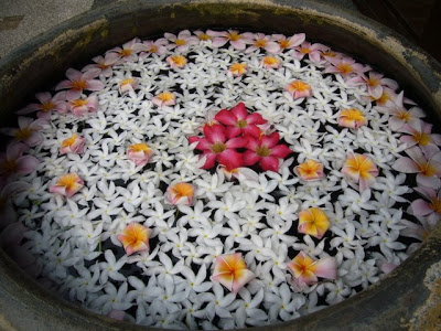 floating flowers in a bowl