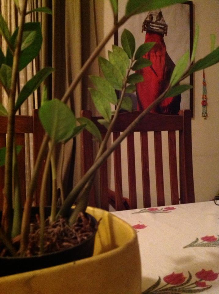 Seema and Rakeshafghan lady pic home Bangalore home tour