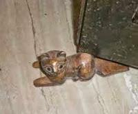 cat door stopper
