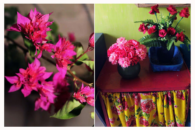 flowers, pink, real, fabric