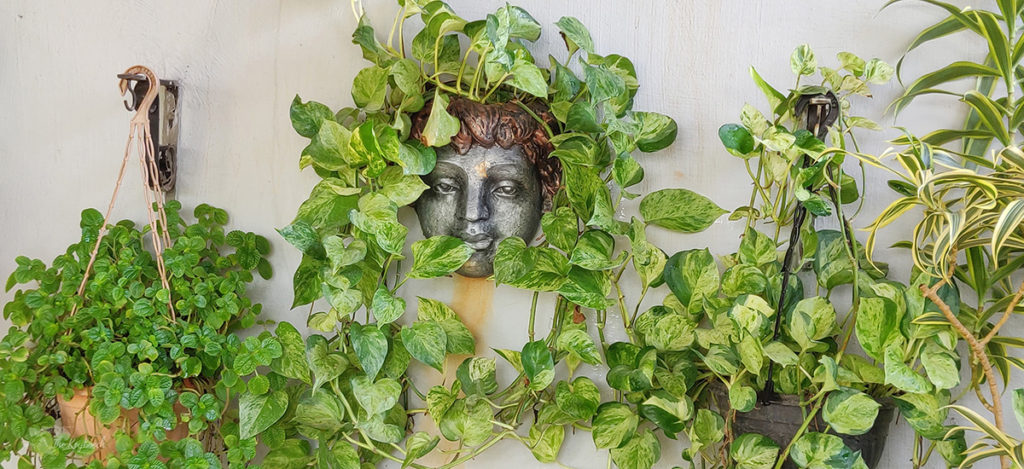 Jayashree Rajan's garden apartment tour on The Keybunch: the charming cherub surrounded by green plants