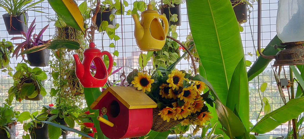 Jayashree Rajan's garden apartment tour on The Keybunch: the pergola with hanging planters and sunflowers