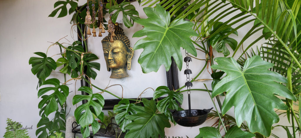 Jayashree Rajan's garden apartment tour on The Keybunch: buddha balcony